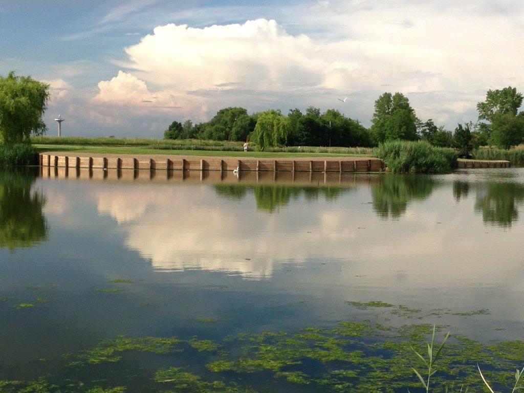 Sponde per laghetto golf club dese legnami for Prodotti per laghetti