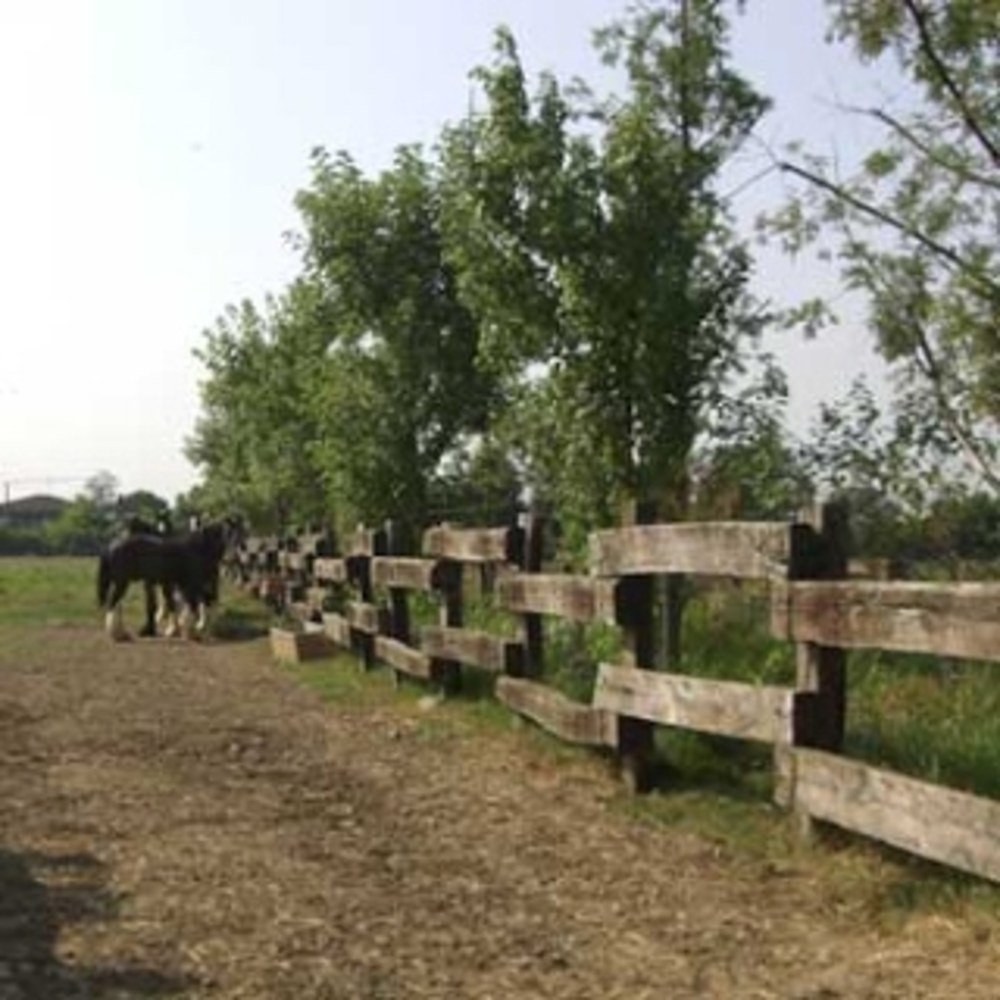 Recinzione per cavalli dese legnami for Recinzioni in tufo